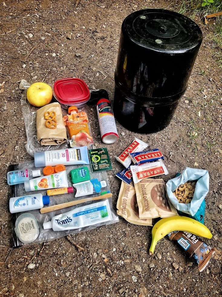 Items that should be packed in your bear canister; food, food waste, trash, and toiletries.